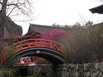 kyoto2014031002.jpg
